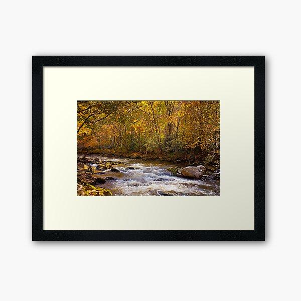 Fall Splendor in the Smokies Framed Art Print