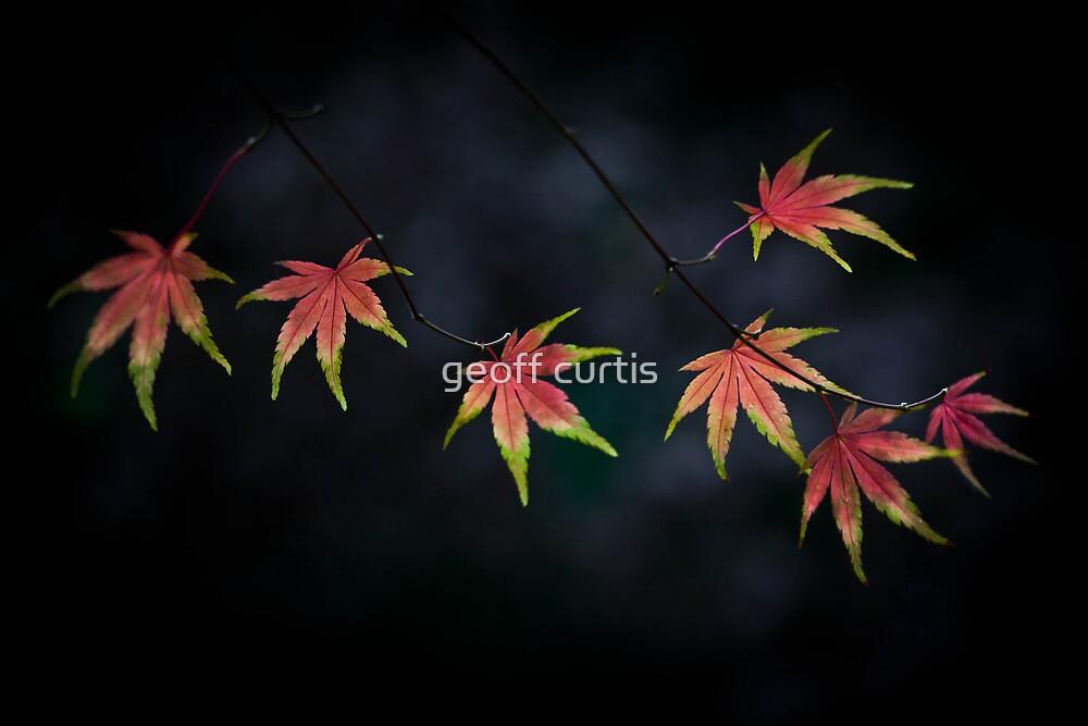 Autumn In My Heart by geoff curtis