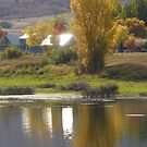 Pineview Reservoir by Kay Hale