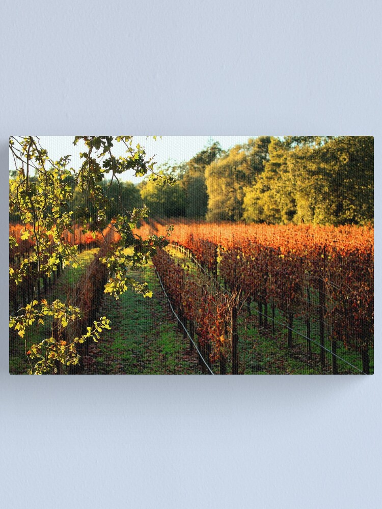 Alternate view of Late Autumn View of Napa Valley 2 Canvas Print