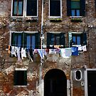 Laundry Hanging in the Sun by Barbara Wyeth