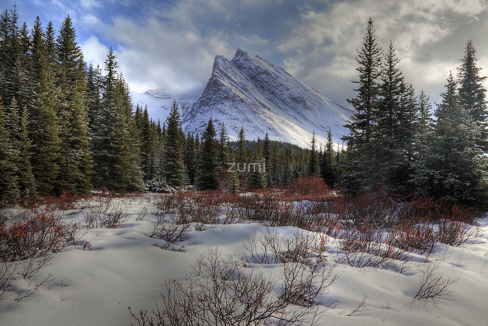 Elbow Pass valley VII by zumi