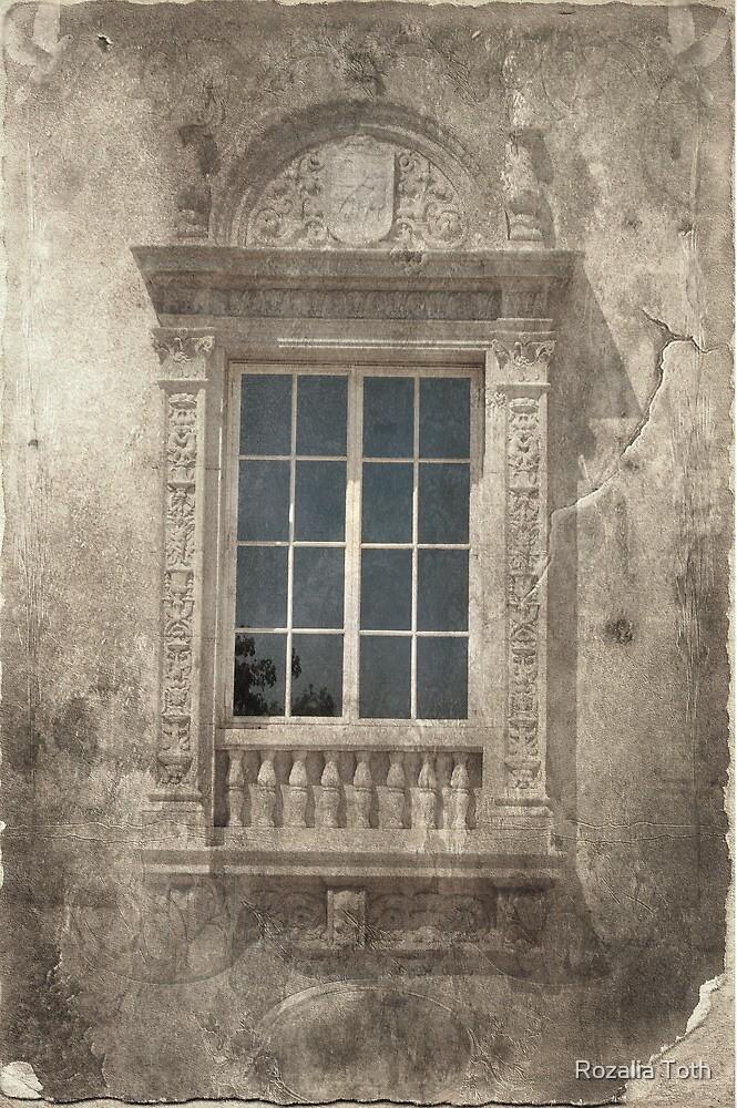 Window by Rozalia Toth