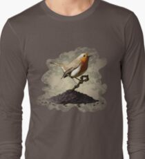 Mr. Robin Finds the Key T-Shirt