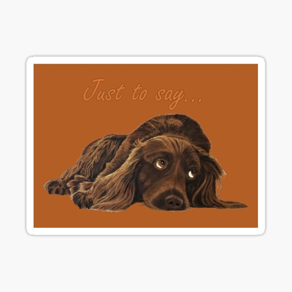 Appealing Spaniel - Just to Say Card Sticker