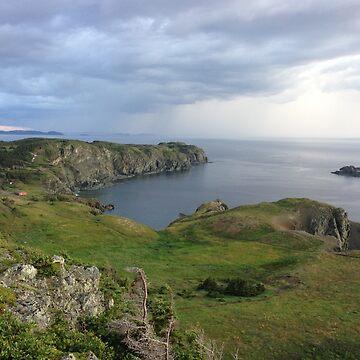 Newfoundland by DerBen