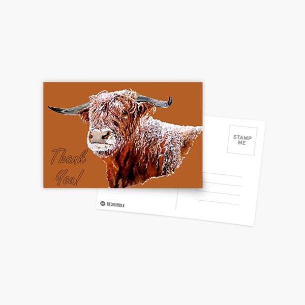 Snowy Highland Cow - Thank You Card Postcard