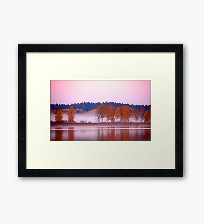 Autumn deliciousness Framed Print