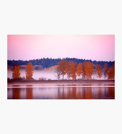Autumn deliciousness Photographic Print