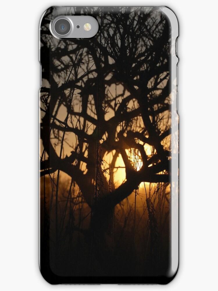 Sunset iPhone Case by Denis Marsili