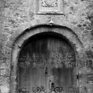 Castle Door  by wildone