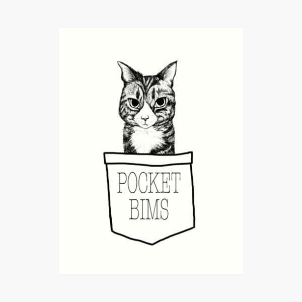 Pocket Bims Art Print