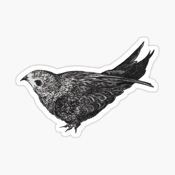 Black and white swift bird Sticker
