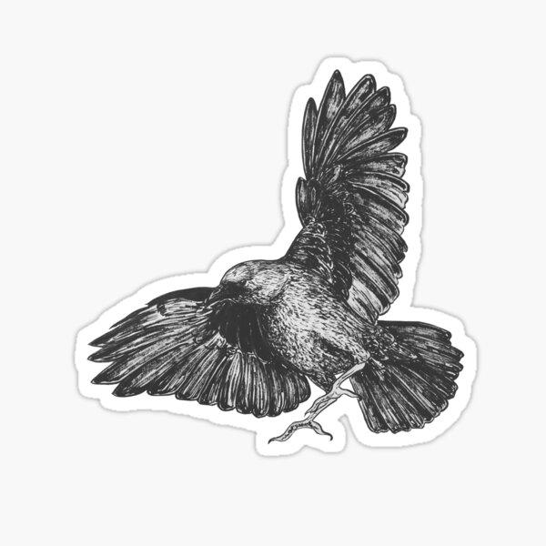 Flying Crow Sticker