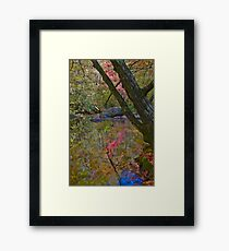 Impressionist Reflection Framed Print