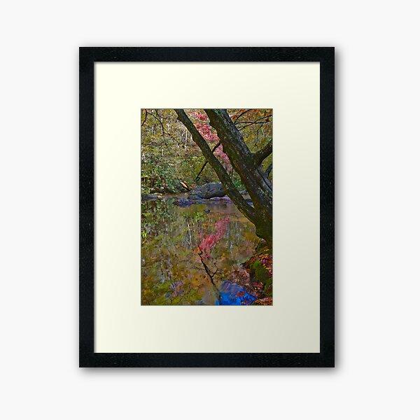 Impressionist Reflection Framed Art Print