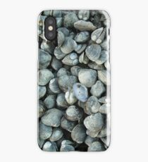 SHELLS - IPHONE CASE iPhone Case/Skin