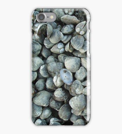 SHELLS - IPHONE CASE iPhone Case/Skin