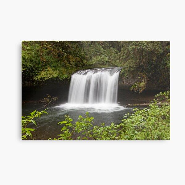 Upper Butte Creek Falls, Oregon Metal Print