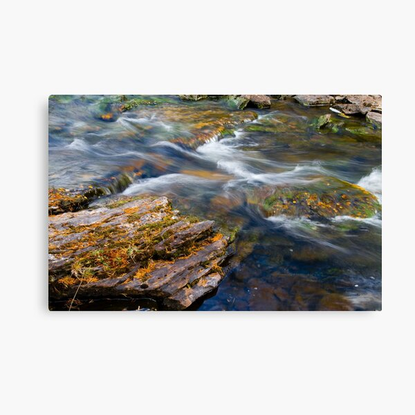 Autumn leaves in fast flowing river Canvas Print