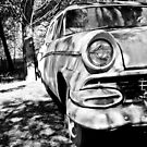 Rusting Away by LadyEloise