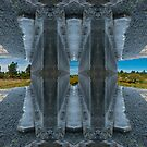 Fort Stevens Bike Trail.Oregon,USA. by TIMOTHY  POLICH