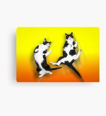 Feline It! - Color Version Canvas Print
