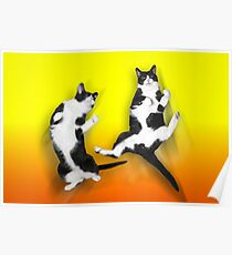 Feline It! - Color Version Poster
