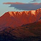 The Remarkables by Jill Fisher