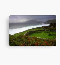 The Irish Coast Canvas Print