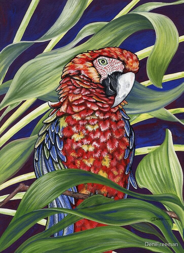 Scarlet Macaw by DeniFreeman