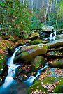 Roaring Fork, Soft Spill by photosbyflood