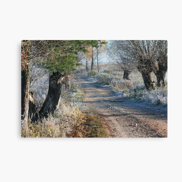 First frost in rural pathway Canvas Print