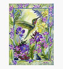 Wild Nectar Photographic Print