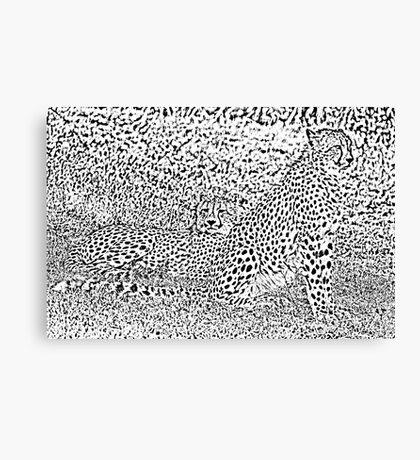 Cheetahs Reduced to Spots Canvas Print