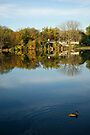 Lake Home on Late October Morning by Robin Clifton