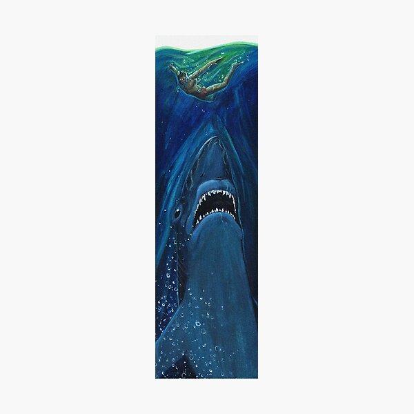 shark Photographic Print
