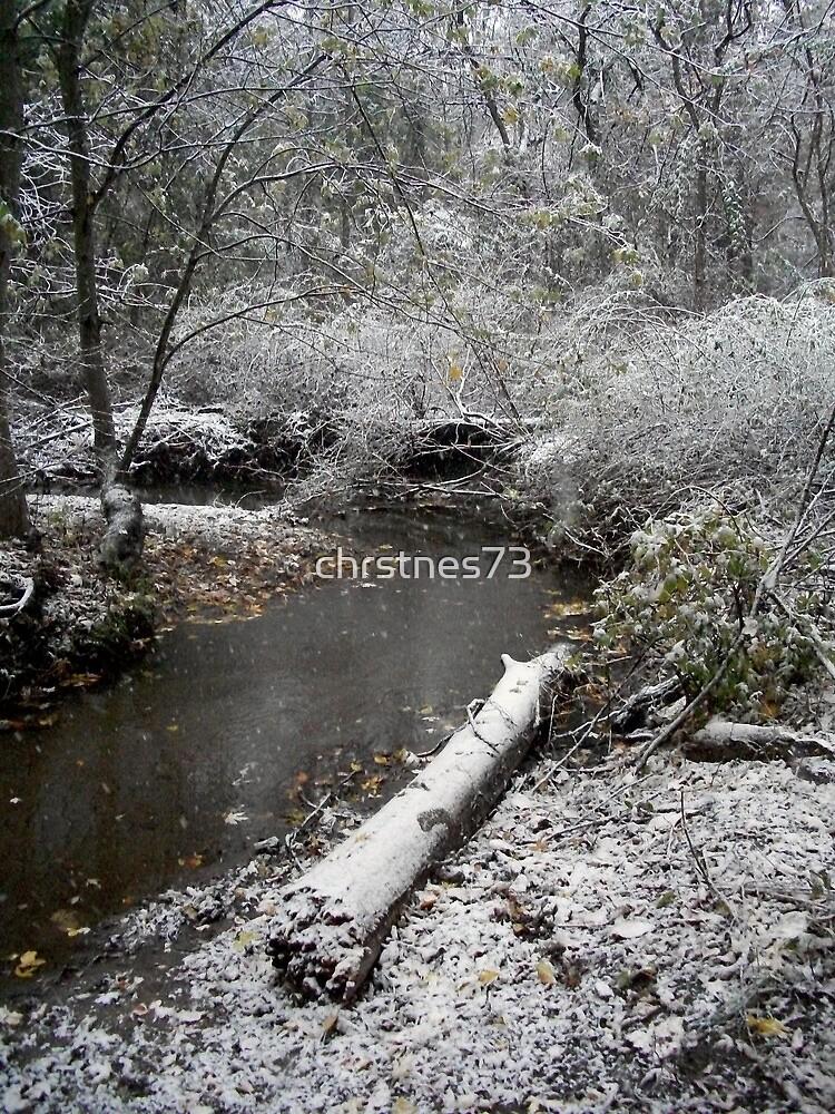 Winter Scene by chrstnes73