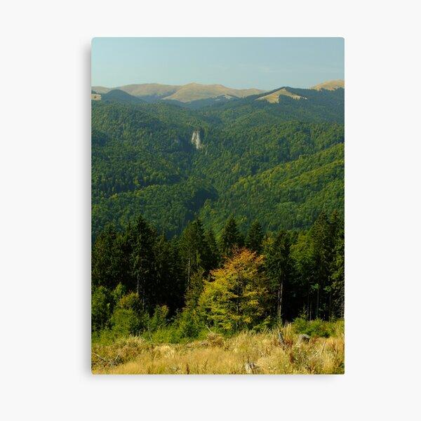 Autumn in the Bucegi Mountains Canvas Print