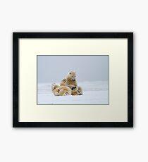 Playtime For Polar Bears Framed Print