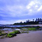 Mossy Green Rocks - Toowoon Bay Beach by Jacob Jackson