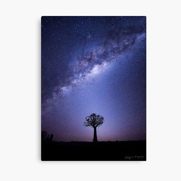 The Zodiacal Glow Canvas Print