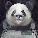 Billy Bob Panda by Vin  Zzep