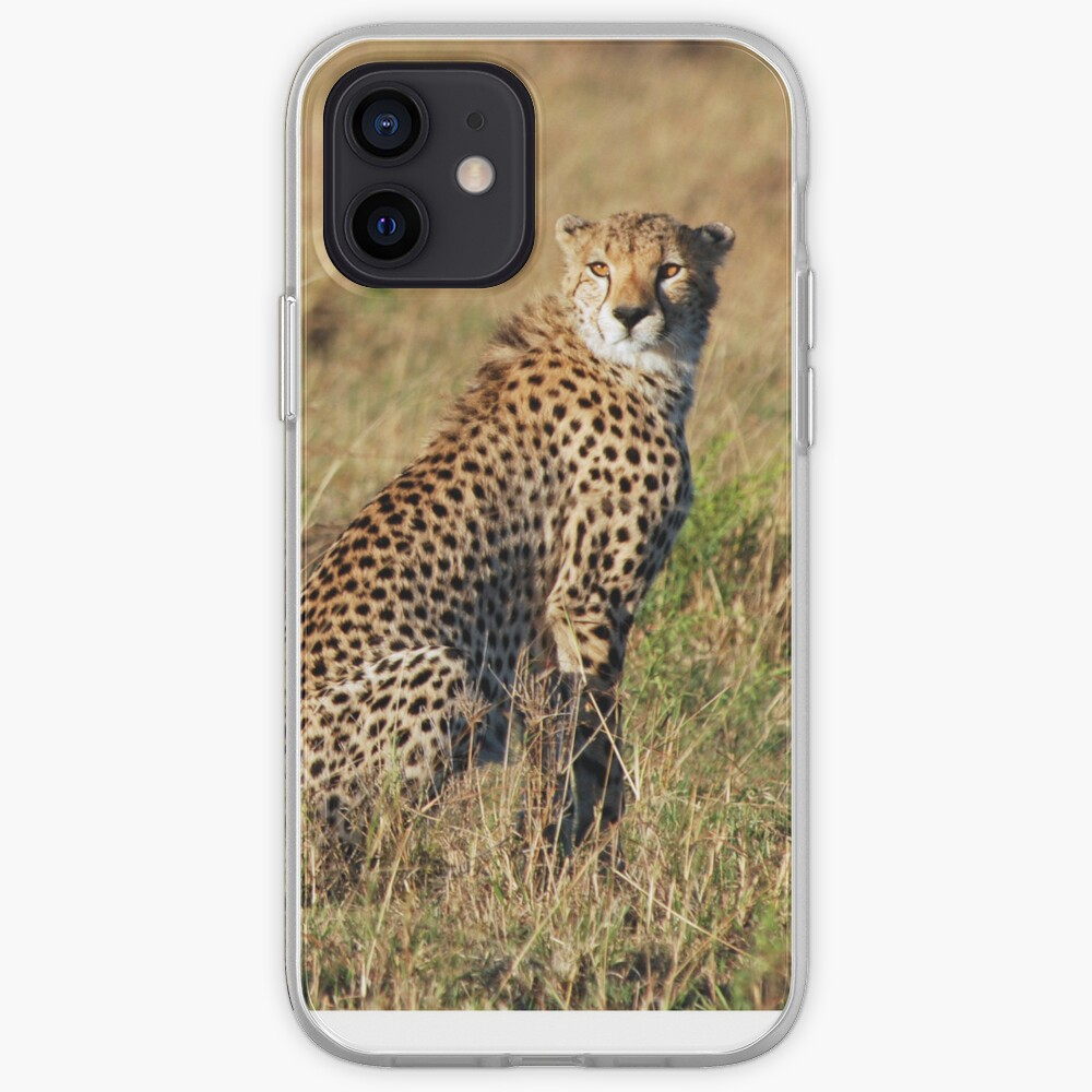 Cheetah iPhone cover iPhone Case & Cover