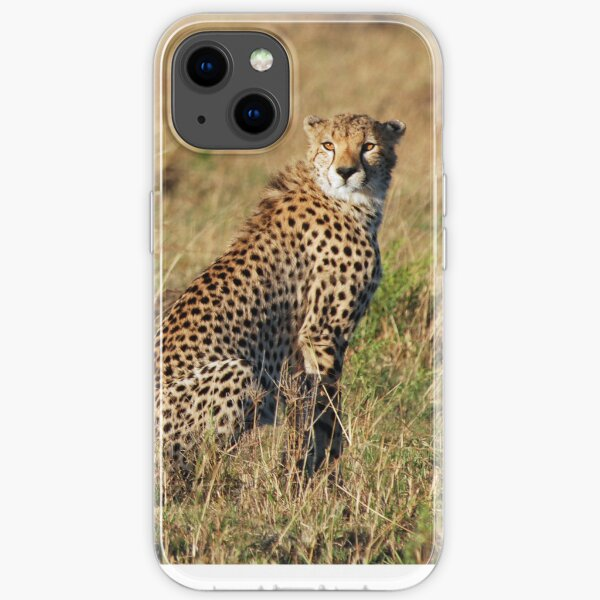 Cheetah iPhone cover iPhone Soft Case