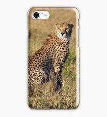 Cheetah iPhone cover iPhone Case/Skin