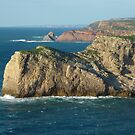 Rugged Coast by Meladana