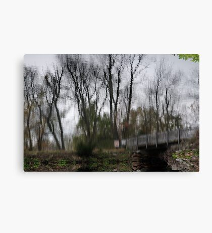Impression of Winter Canvas Print