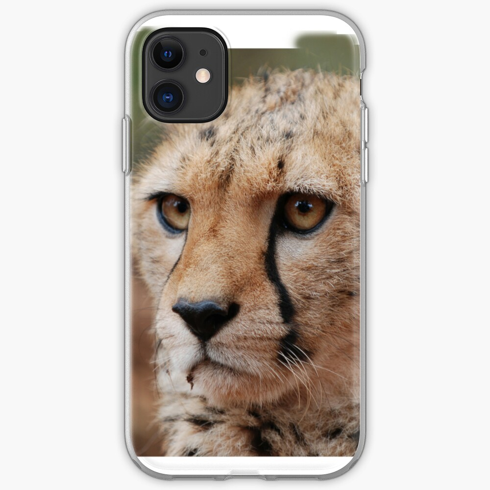 Cheetah Face iphone cover iPhone Case & Cover
