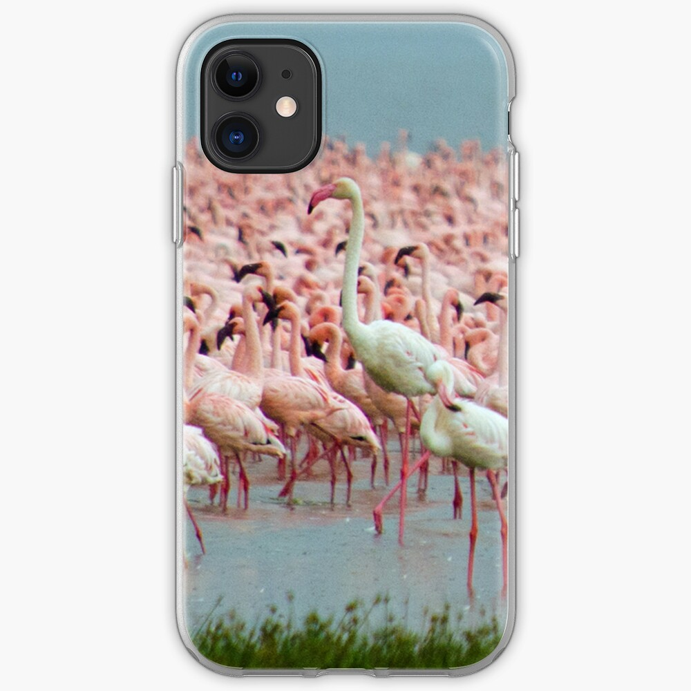 Flamingo iphone cover iPhone Case & Cover